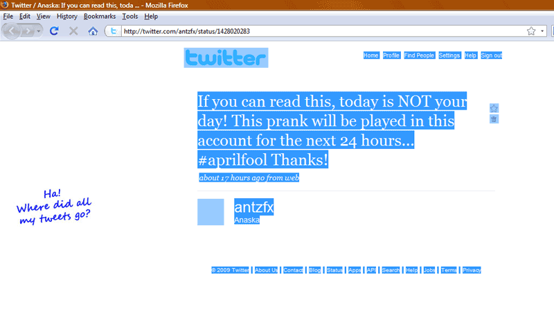tweet_antzfx21