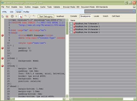 IE-Developer-Tools-inside-js
