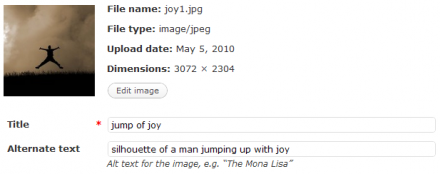 Add Alt tag to Images