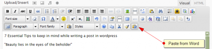 Paste from Word into WordPress