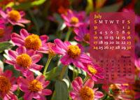 July - 2011 Calendar