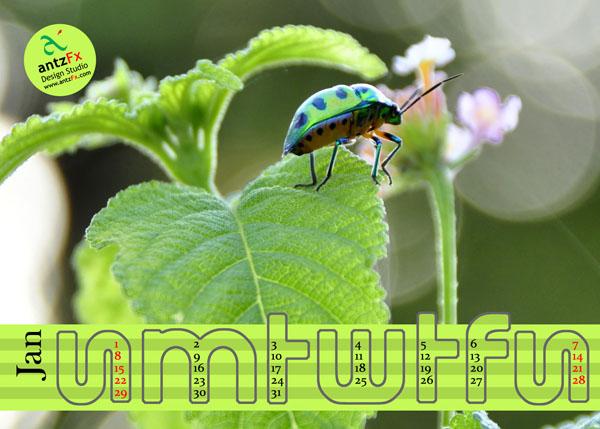2012Calendar_preview Nature