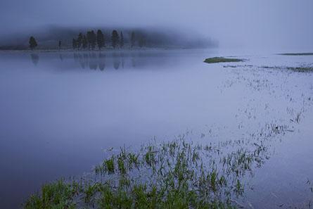 John Pedersen Interview - Foggy Sunrise-L
